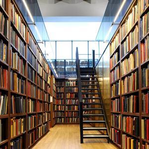 Библиотеки Алмазного